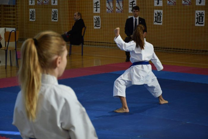 32. karate kup Mladosti, Ivanić-Grad